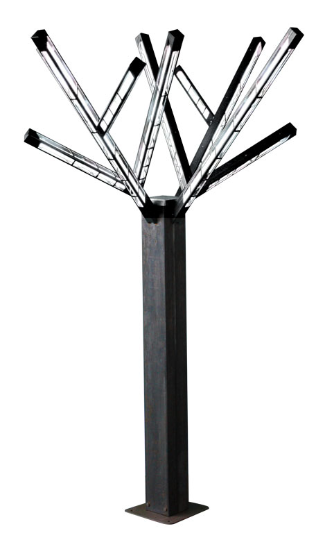 Arbres blancs disponibles pour l'arbre de luxe
